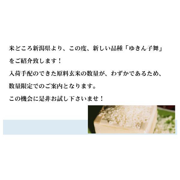 無洗米 5kg×2袋 新潟県産 ゆきん子舞 10kg 28年産 送料無料|hseason|03
