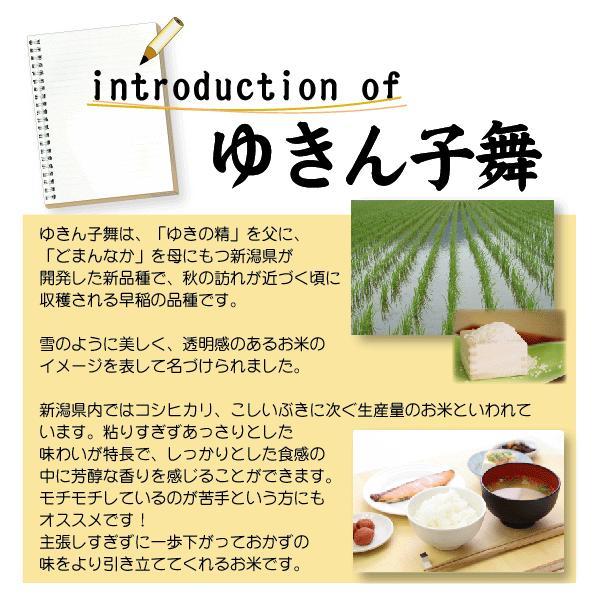 無洗米 5kg×2袋 新潟県産 ゆきん子舞 10kg 28年産 送料無料|hseason|04
