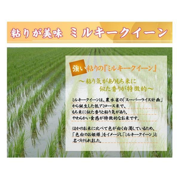 無洗米 5kg×2袋 ミルキークイーン 滋賀県産 近江米 10kg  ポイント3倍 29年産 送料無料|hseason|03