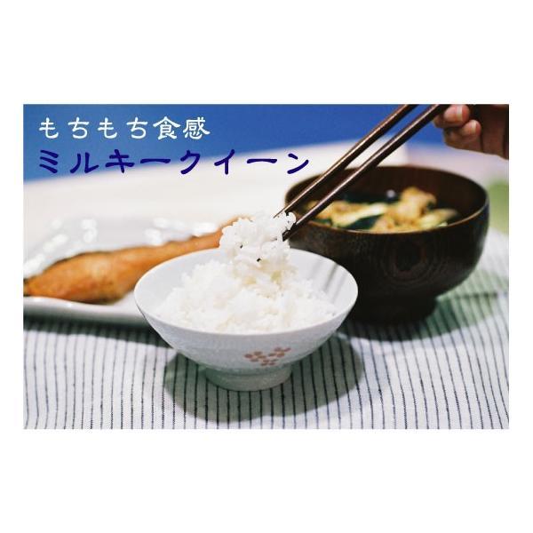 無洗米 5kg×2袋 ミルキークイーン 滋賀県産 近江米 10kg  ポイント3倍 29年産 送料無料|hseason|05