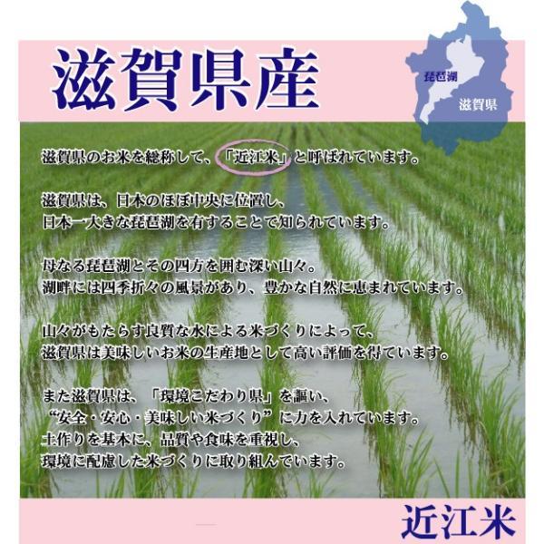 無洗米 5kg ミルキークイーン 滋賀県産 近江米 29年産 送料無料|hseason|04