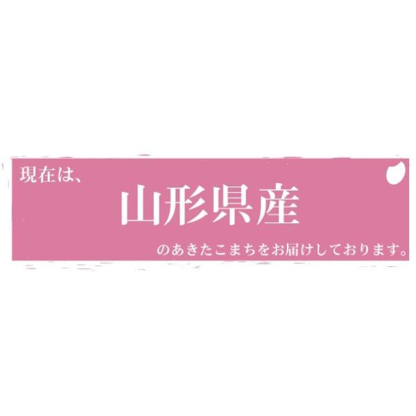 新米 10kg 5kg×2袋 無洗米 お米 あきたこまち 30年産  滋賀県産 送料無料|hseason|05
