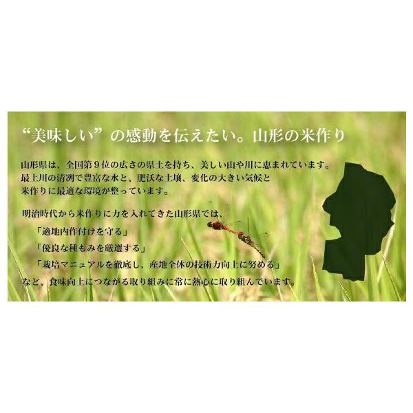 新米 10kg 5kg×2袋 無洗米 お米 あきたこまち 30年産  滋賀県産 送料無料|hseason|06