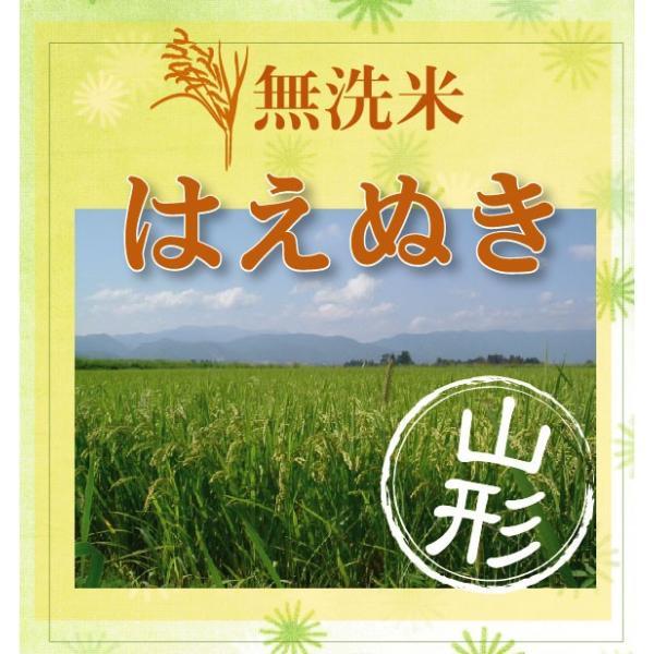 無洗米 5kg 山形県産 はえぬき 29年産 送料無料|hseason|03