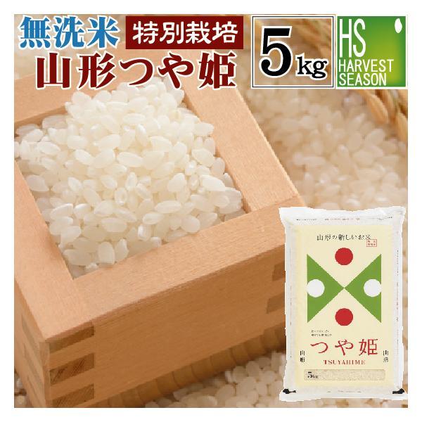 無洗米 5kg つや姫 山形県産 米 お米 令和2年産 送料無料 特別栽培米