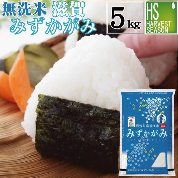 無洗米 5kg みずかがみ 滋賀県産 29年産 特別栽培米 送料無料 特A|hseason