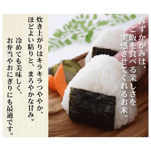 無洗米 5kg×2 みずかがみ 滋賀県産 10kg 30年産 特別栽培米 送料無料 特A|hseason|04