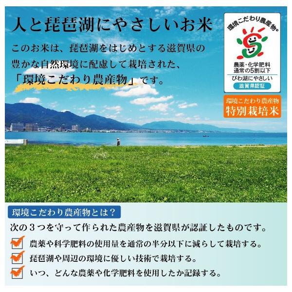 無洗米 5kg×2 みずかがみ 滋賀県産 10kg 30年産 特別栽培米 送料無料 特A|hseason|05