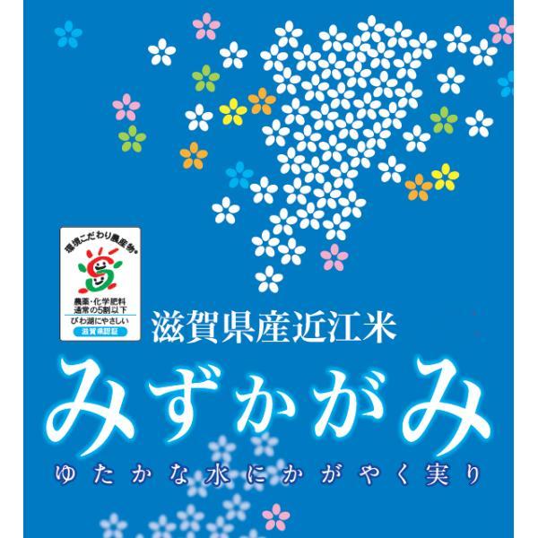 無洗米 5kg みずかがみ 滋賀県産 29年産 特別栽培米 送料無料 特A|hseason|02