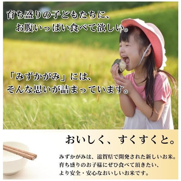 無洗米 5kg みずかがみ 滋賀県産 29年産 特別栽培米 送料無料 特A|hseason|03