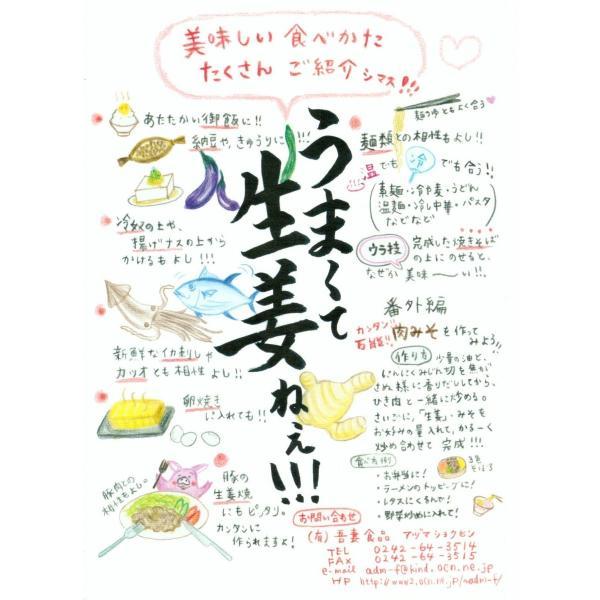 うまくて生姜ねぇ  10個 送料無料セット 吾妻食品 国産生姜使用|htnetmall|02