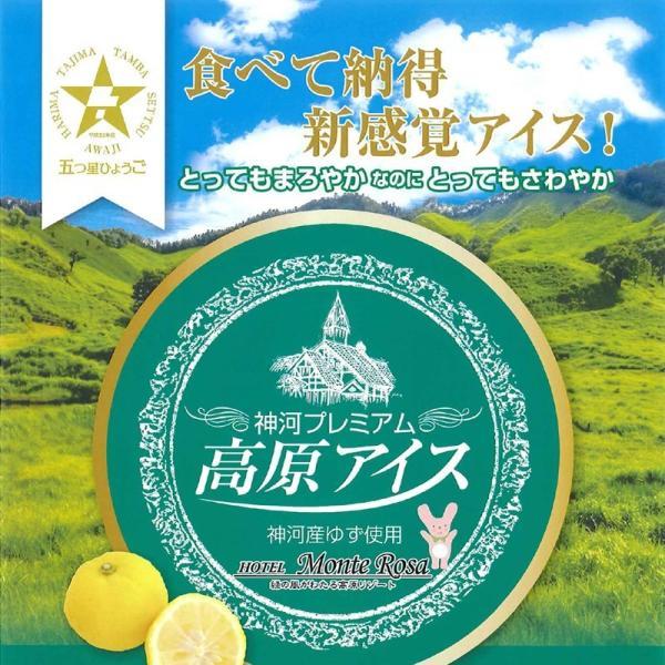 「ホテルモンテローザ」神河プレミアム 高原アイスゆず 12個セット(冷凍)|hyogo-tokusanhin|05