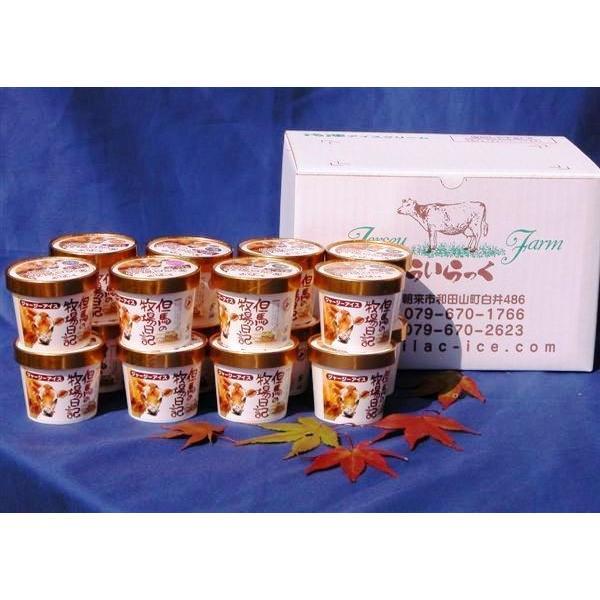 「あいす工房らいらっく」ジャージー牧場からの贈り物 ジェラート詰め合わせ16個セット(冷凍)|hyogo-tokusanhin