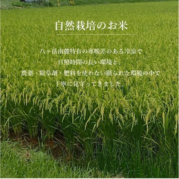 無農薬無肥料の自然栽培 めぐみの米 3kg|i-crtshop|02
