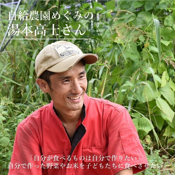 無農薬無肥料の自然栽培 めぐみの米 3kg i-crtshop 05