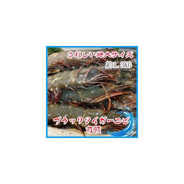 中サイズ 2-3人前 ブラックタイガーエビ 有頭 約1.3kg (約15本入り) えび 海老