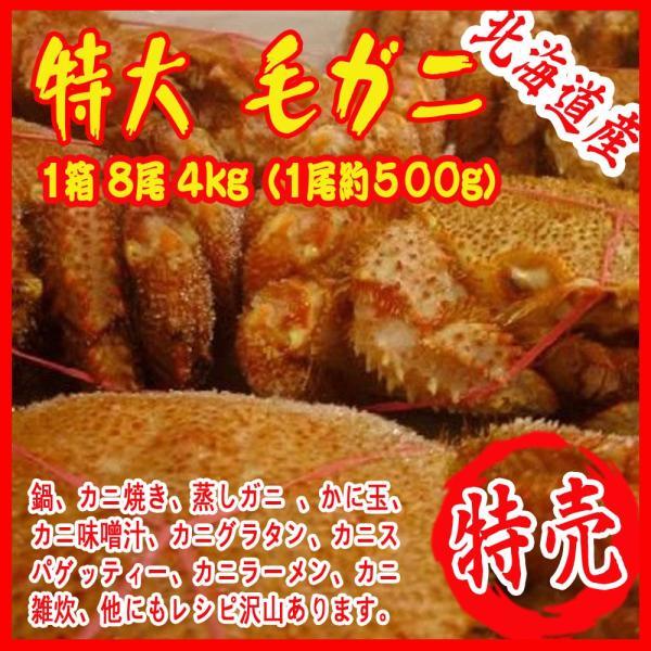 特大 毛ガニ 1箱 8尾 4kg(1尾約500g)北海道&産 カニ 蟹 かに