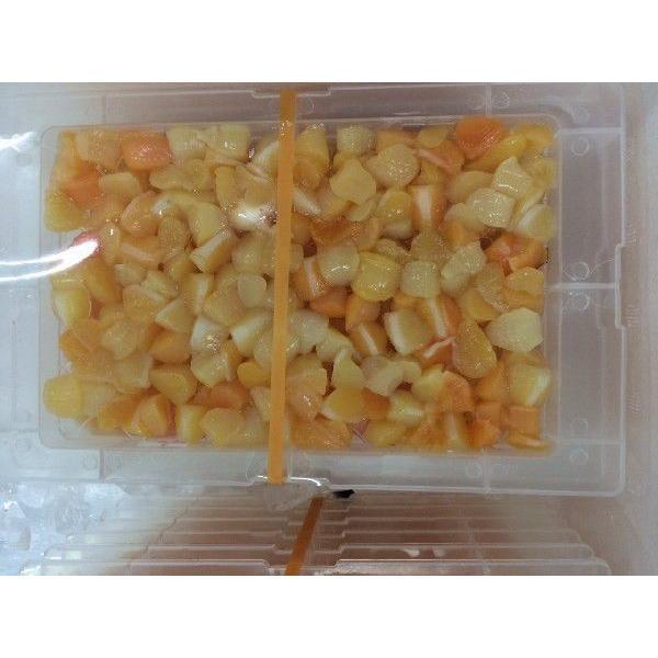 期間特売 旬の味! 千葉県産 アオヤギ 小柱 3パック セット |i-ichiba