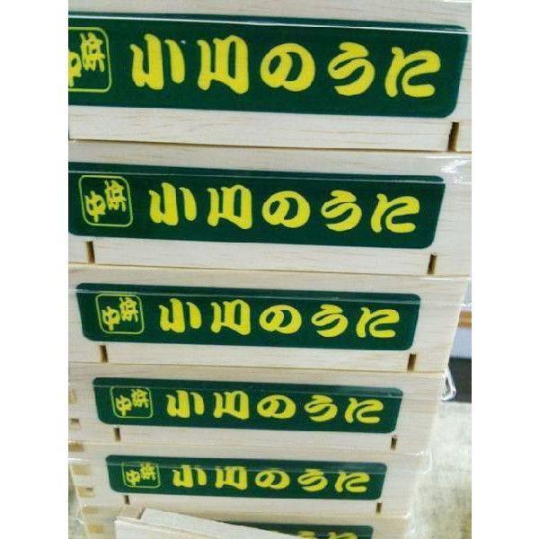 お歳暮) 生ウニ 小川のうに 250g(一粒 約4cm-5cm) ロシア産&北海道産|i-ichiba|04