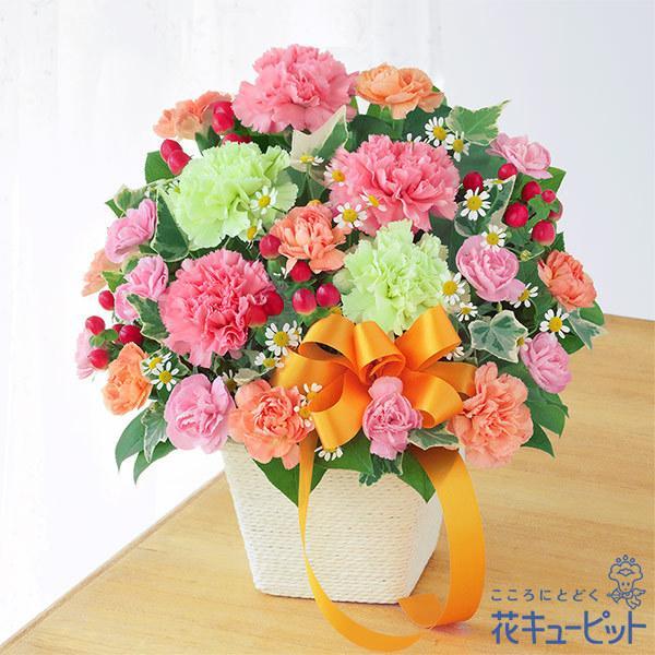 母の日ギフト2021プレゼント花カーネーション誕生日60代70代花キューピットのカーネーションのミックスアレンジメント