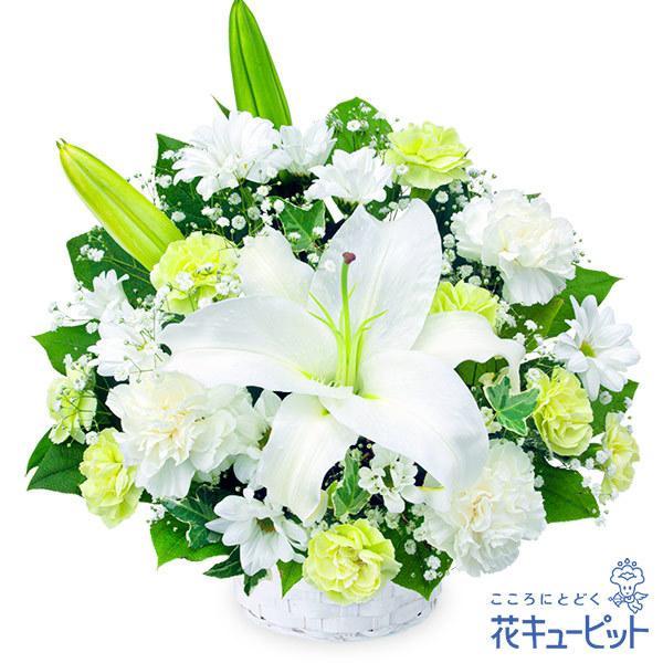 お供え・お悔やみの献花・お供えのアレンジメント花キューピット 仏花 供花 法要 枕花 お盆 お彼岸の画像