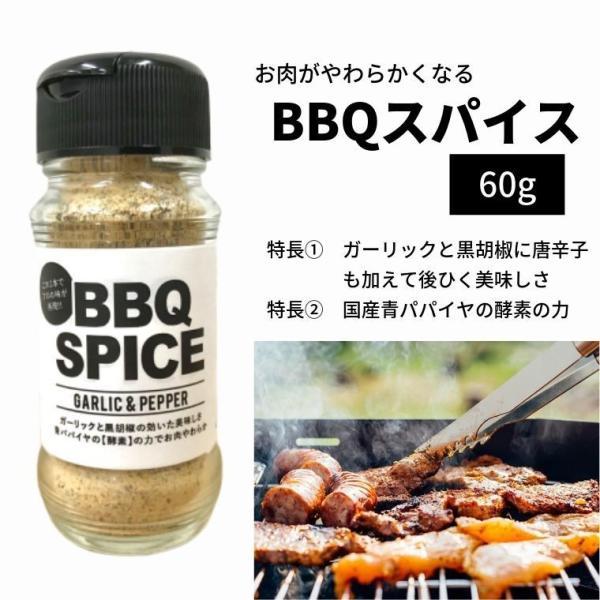 BBQ スパイス 3本セット 60g×3本 送料無料 肉が柔らかくなる 肉専用 肉用 シーズニング バーベキュー 万能調味料 キャンプ|iandu|02