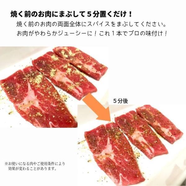 BBQ スパイス 3本セット 60g×3本 送料無料 肉が柔らかくなる 肉専用 肉用 シーズニング バーベキュー 万能調味料 キャンプ|iandu|05