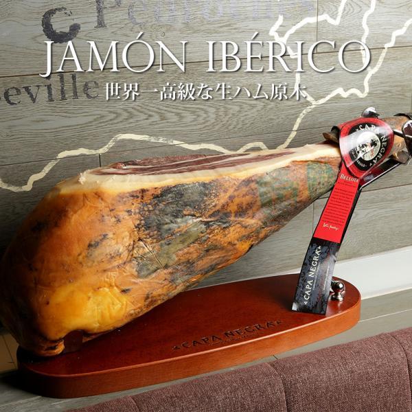 世界一高級 生ハム 原木 イベリコ豚 レアル ベジョータ 約8kg 専用台 ナイフ付き ブロック 約100人前 イベリコ屋 常温 ※ 原木セット