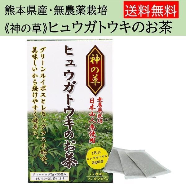 ヒュウガトウキ  ノンカフェイン 日本山人参 神の草 ティーパック 健康茶 無農薬 美味しく飲みやすい健康茶!|ic-shopping