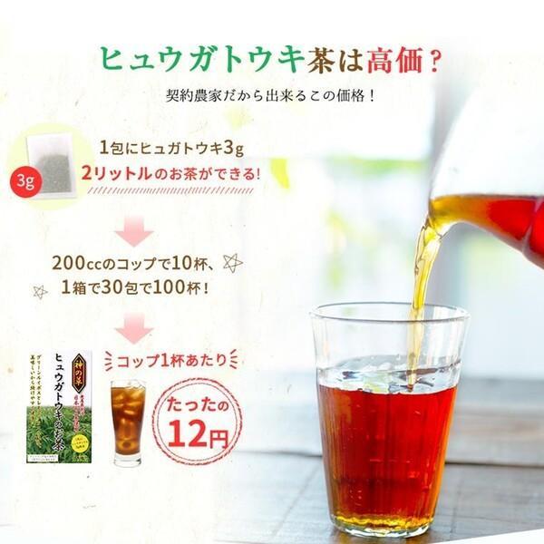 ヒュウガトウキ  ノンカフェイン 日本山人参 神の草 ティーパック 健康茶 無農薬 美味しく飲みやすい健康茶!|ic-shopping|12