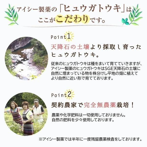 ヒュウガトウキ  ノンカフェイン 日本山人参 神の草 ティーパック 健康茶 無農薬 美味しく飲みやすい健康茶!|ic-shopping|05