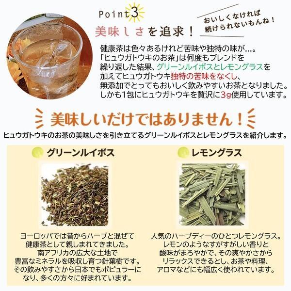 ヒュウガトウキ  ノンカフェイン 日本山人参 神の草 ティーパック 健康茶 無農薬 美味しく飲みやすい健康茶!|ic-shopping|06