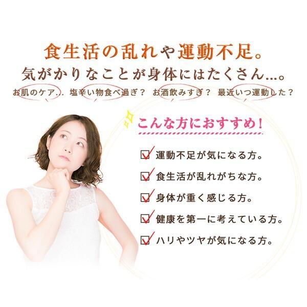 ヒュウガトウキ  ノンカフェイン 日本山人参 神の草 ティーパック 健康茶 無農薬 美味しく飲みやすい健康茶!|ic-shopping|07
