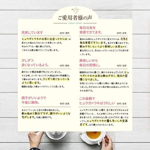 ヒュウガトウキ  ノンカフェイン 日本山人参 神の草 ティーパック 健康茶 無農薬 美味しく飲みやすい健康茶!|ic-shopping|09