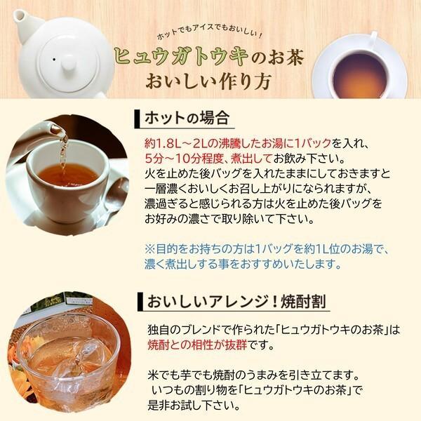 ヒュウガトウキ  ノンカフェイン 日本山人参 神の草 ティーパック 健康茶 無農薬 美味しく飲みやすい健康茶!|ic-shopping|10