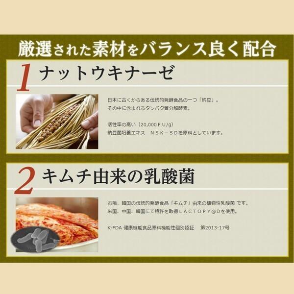 サプリ 納豆 キムチ 発酵 健康食品 サプリメント ナットウキナーゼ タマネギ DHA 乳酸菌 伝統発酵食品サプリメント! ic-shopping 05