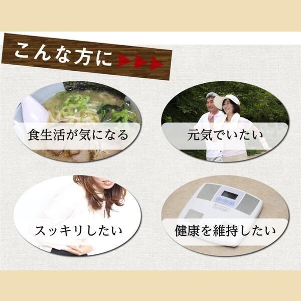 サプリ 納豆 キムチ 発酵 健康食品 サプリメント ナットウキナーゼ タマネギ DHA 乳酸菌 伝統発酵食品サプリメント! ic-shopping 07