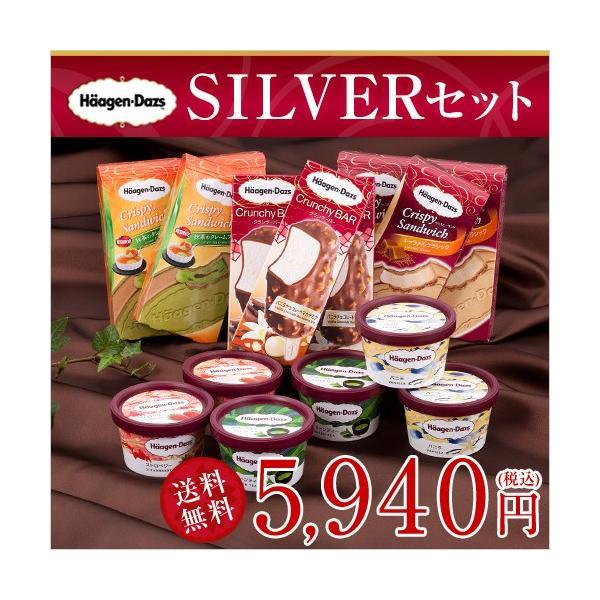 ハーゲンダッツ アイスクリーム SILVERセット(6種・15個入り)(新パッケージ)(ラッピング付)(送料込)  ギフト アイス|ice-ouan