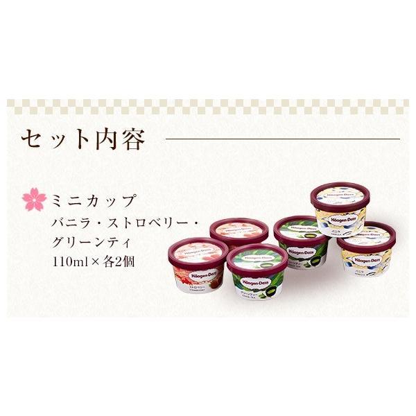 ハーゲンダッツ アイスクリーム SILVERセット(6種・15個入り)(新パッケージ)(ラッピング付)(送料込)  ギフト アイス|ice-ouan|03