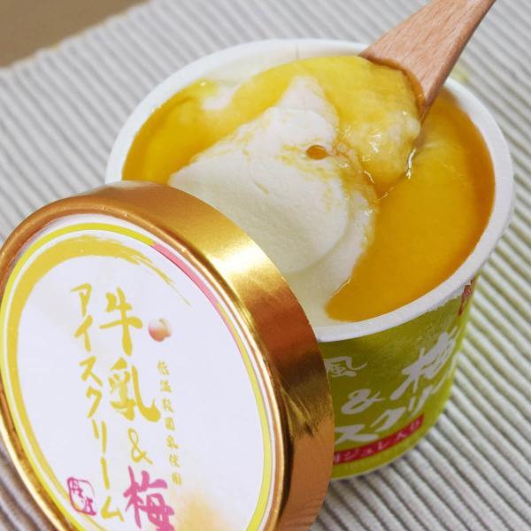 アイスクリーム 紀州南高梅アイスクリーム5個入り 丹波牛乳の濃厚アイスクリームに甘酸っぱい南高梅のジュレを贅沢にトッピング 後味すっきりアイスクリーム ice-sasayama 02