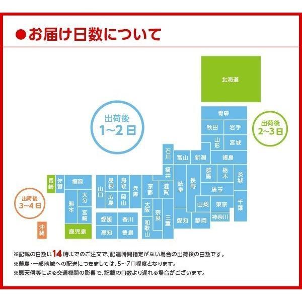 オープン記念セール アクエリアス 500mlPET 24本セット|iceselection|08