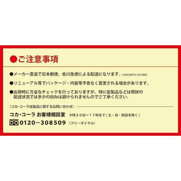 オープン記念セール アクエリアス 500mlPET 24本セット|iceselection|10