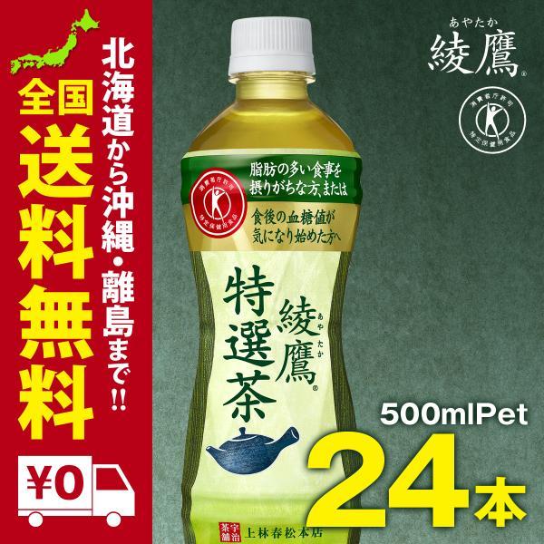 綾鷹 特選茶 PET 500ml 24本セット|iceselection