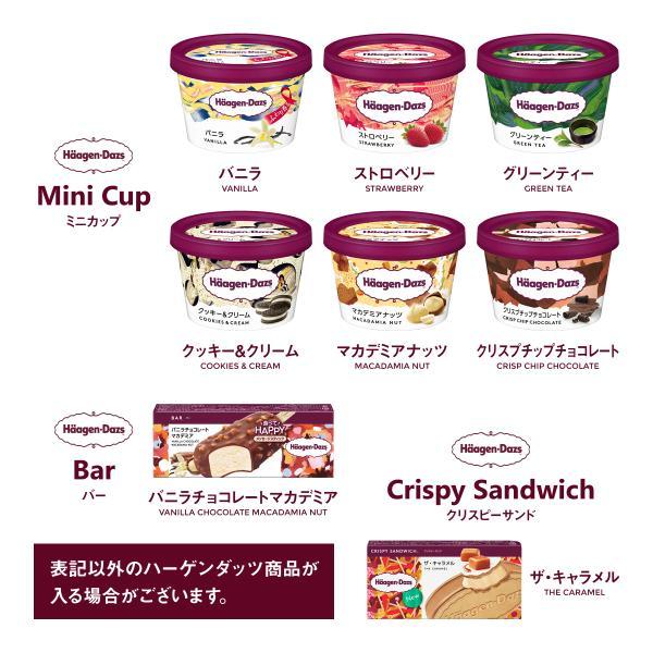 お中元 福袋 アイスクリーム 13個の詰め合わせ セット(ハーゲンダッツ  ミニカップ 2個入り) 送料無料 ギフト FB-13|iceselection|02