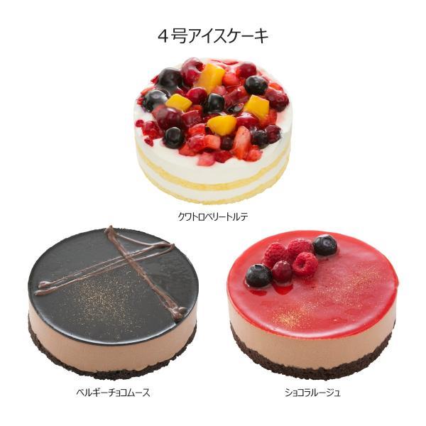 バラエティボックス ハーゲンダッツ マルチパック  4号ホールケーキ(冷凍)アイスクリーム 21個の詰め合わせ セット 送料無料 ギフト FB-22|iceselection|03