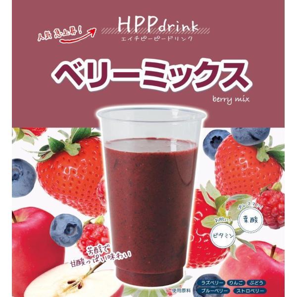 コールドプレス ジュース FOOD BOAT HPPdrink 5個入りギフトセット iceselection 05