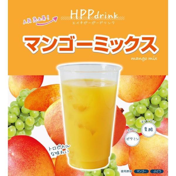 コールドプレス ジュース FOOD BOAT HPPdrink 5個入りギフトセット iceselection 07