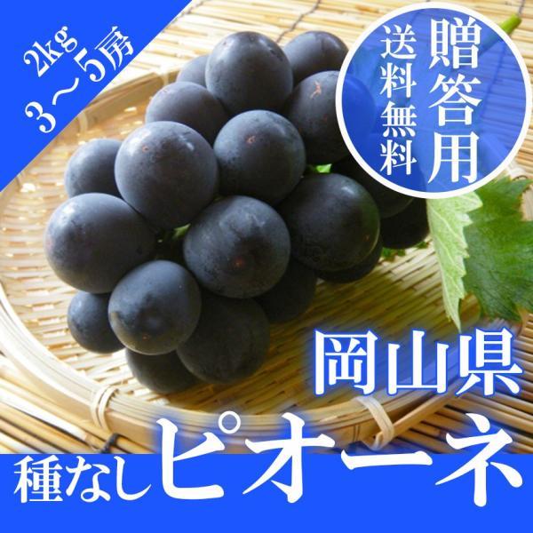 2021 ギフト 岡山県産 ピオーネ 贈答用 赤秀品 2kg (3〜6房)贈答用 葡萄 ブドウ ぶどう 敬老の日 プレゼント 御礼 御祝 フルーツ