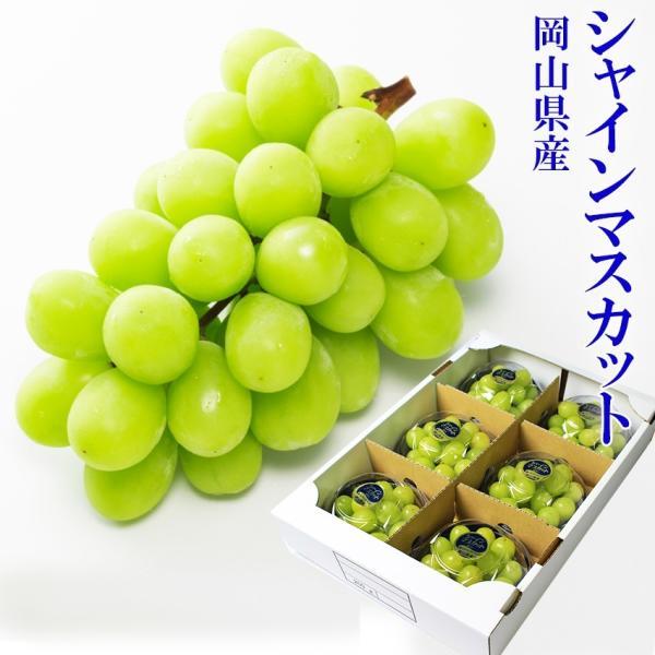 岡山県産 シャインマスカット 摘み落とし200g×6パック 秀品 葡萄 ブドウ ギフト 送料無料