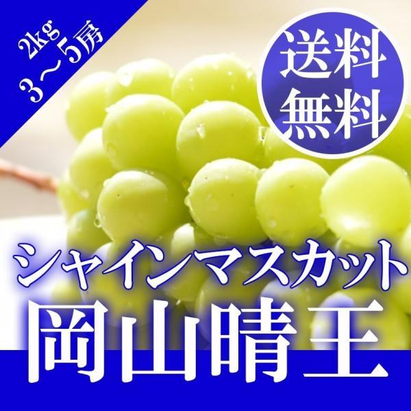 2021 ギフト 岡山県産 シャインマスカット 晴王 赤秀品 3〜5房2kg 贈答用 葡萄 ブドウ ぶどう 御礼 御祝 フルーツ